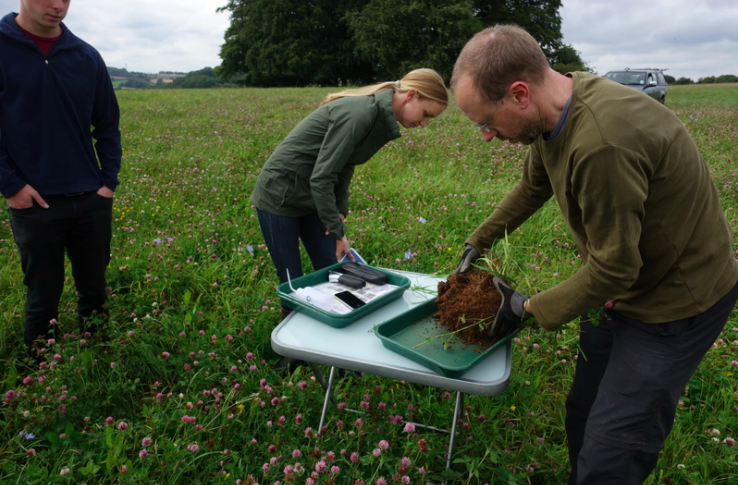 Niels counting earthworms, part of the spade test. (credit: Niels Corfield)