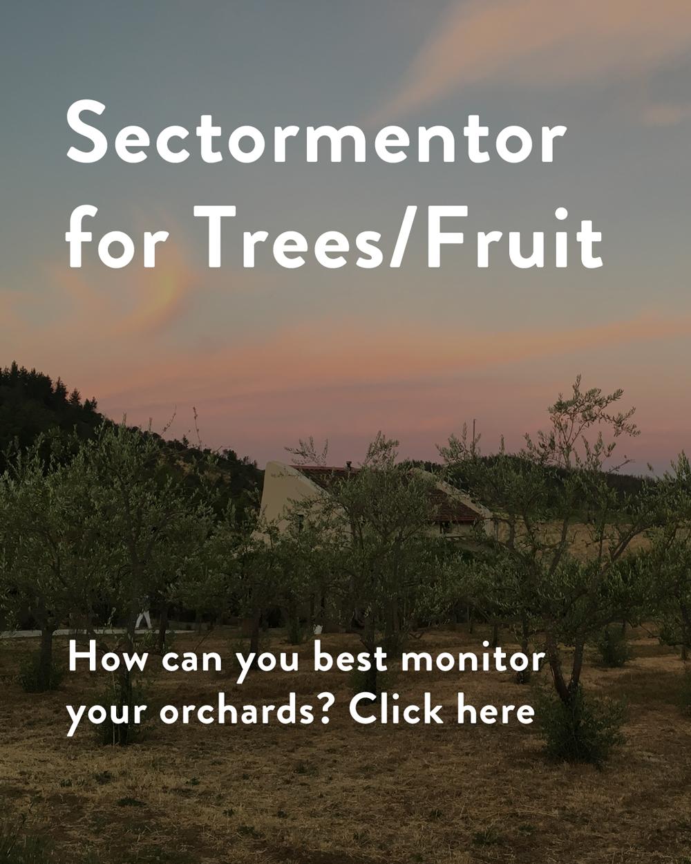 sectormentor.com